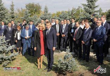 درختکاری مکرون