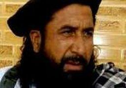 شرط طالبان برای صلح