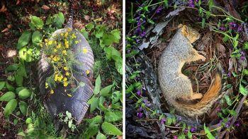 عجیب ترین مراسم یادبود برای حیوانات مرده! + تصاویر