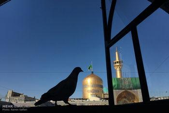 تدوین دستورالعمل بازگشایی حرم امام هشتم شیعیان توسط  آستان قدس رضوی