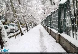 بارش برف در جاده فیروزکوه؛ صبح امروز  / فیم