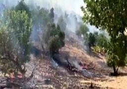 تماس نماینده ولی فقیه با وزیر دفاع برای اطفای حریق جنگلهای ارسباران